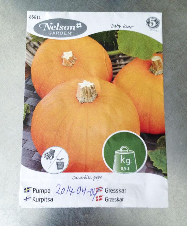 pumpkinseeds, pumpafrö