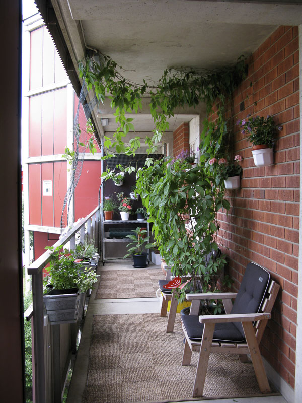 Monicas, my neighbour, space on the outside corridor.