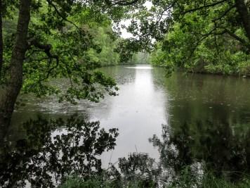 The Big Dam