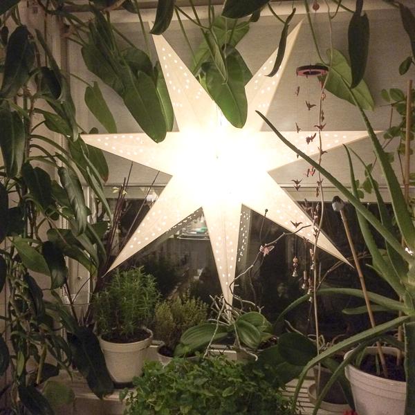 star, kitchen, kitchenwindow