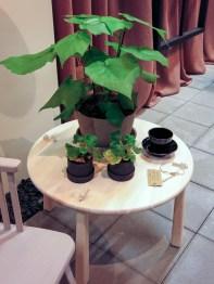 Nice pots