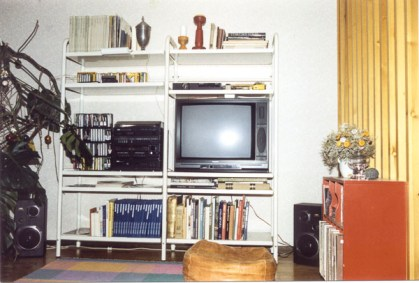 TV in book-case.