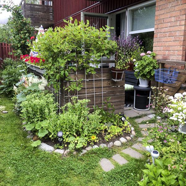 garden, patio, greenery