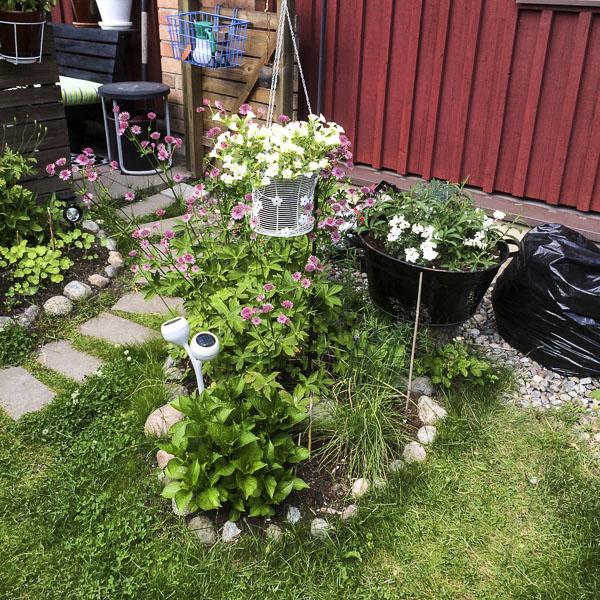 flowerbed, garden, greenery