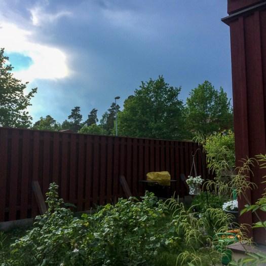 weatherchange, garden, greenery