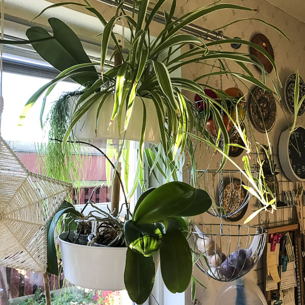 creative_plantpots