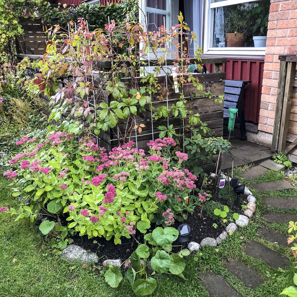 garden, gardenentrance