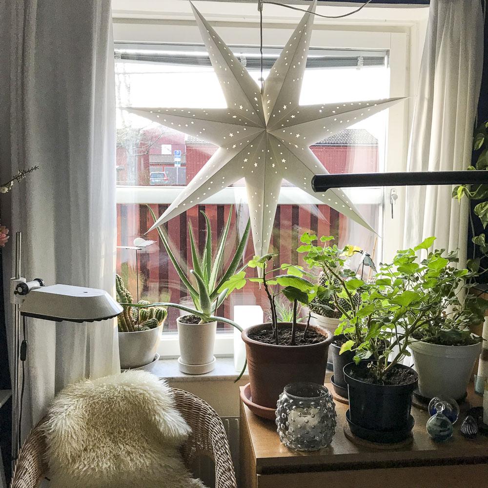 xmas, decorations, star