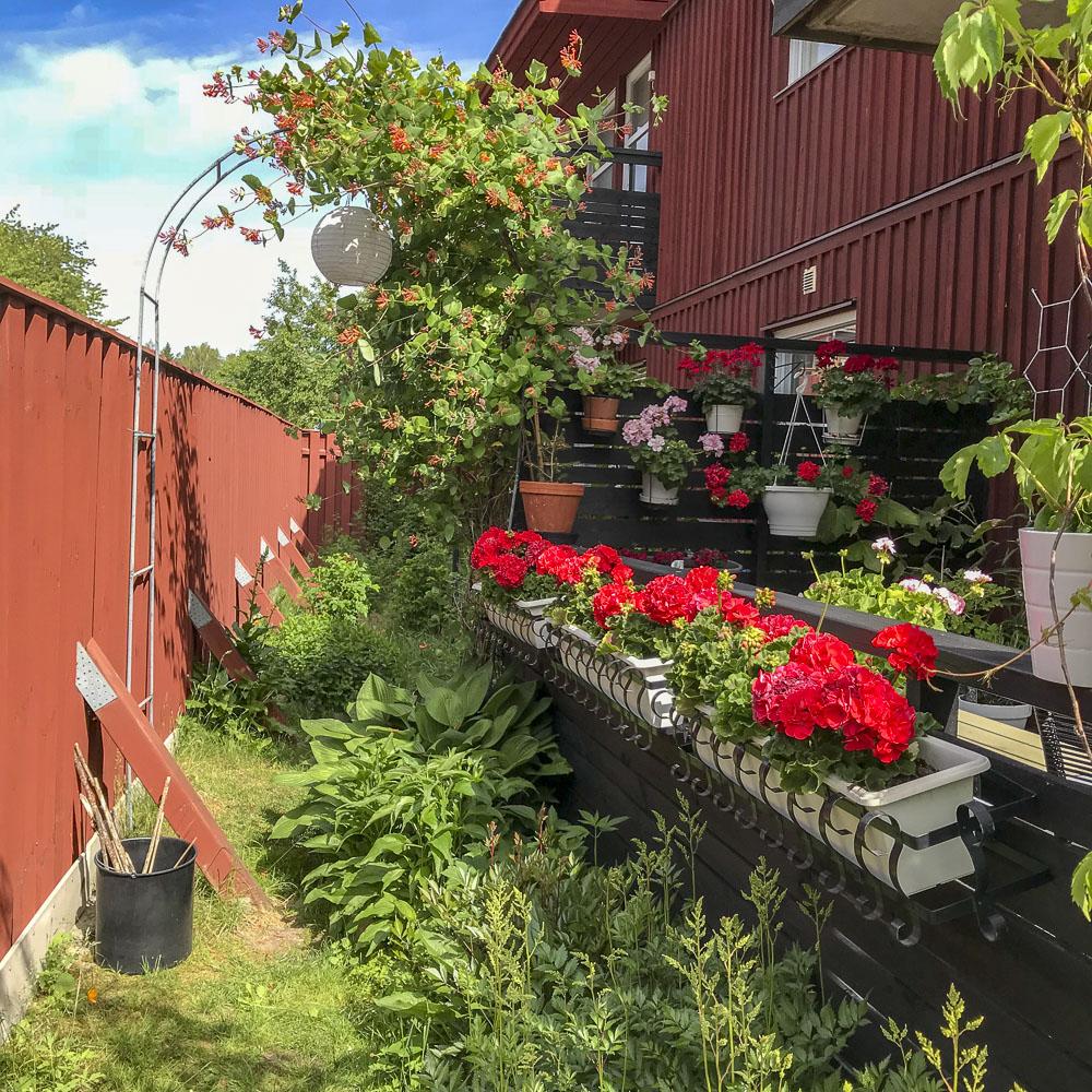 flowerbeds