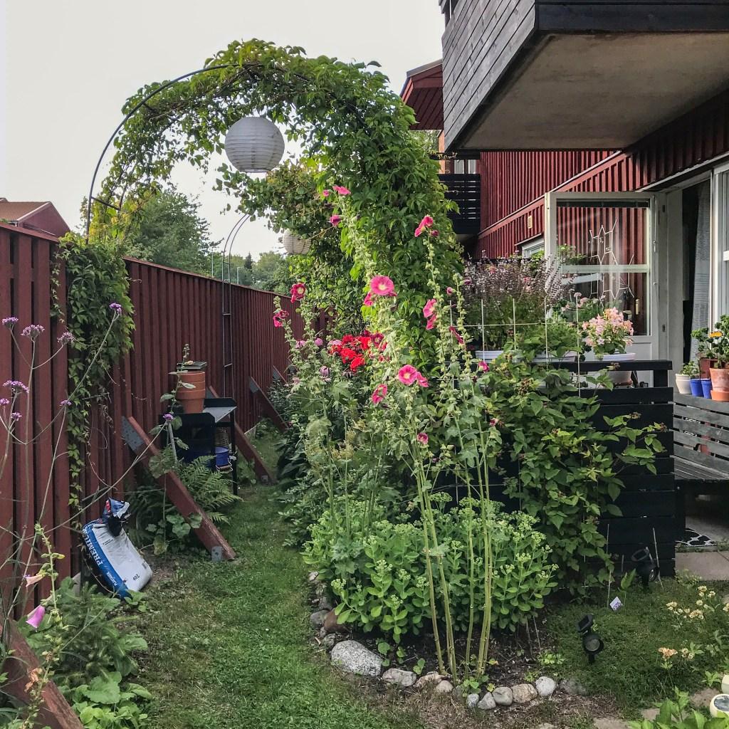 garden, flowerbeds