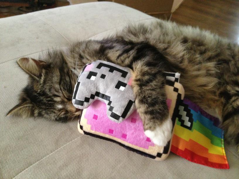 Nyan Cat creator Chris Torres talks Nintendo – Nintendo Insider