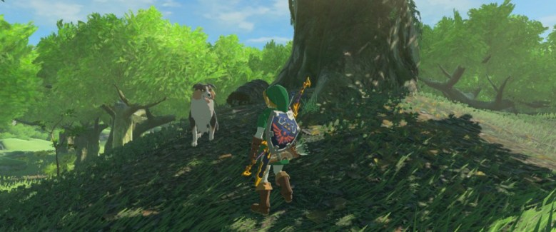 hylian-retriever-zelda-breath-of-the-wild-screenshot