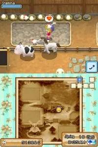 harvest-moon-grand-bazaar-review-screenshot-2