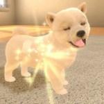 Little Friends: Dogs And Cats Screenshot