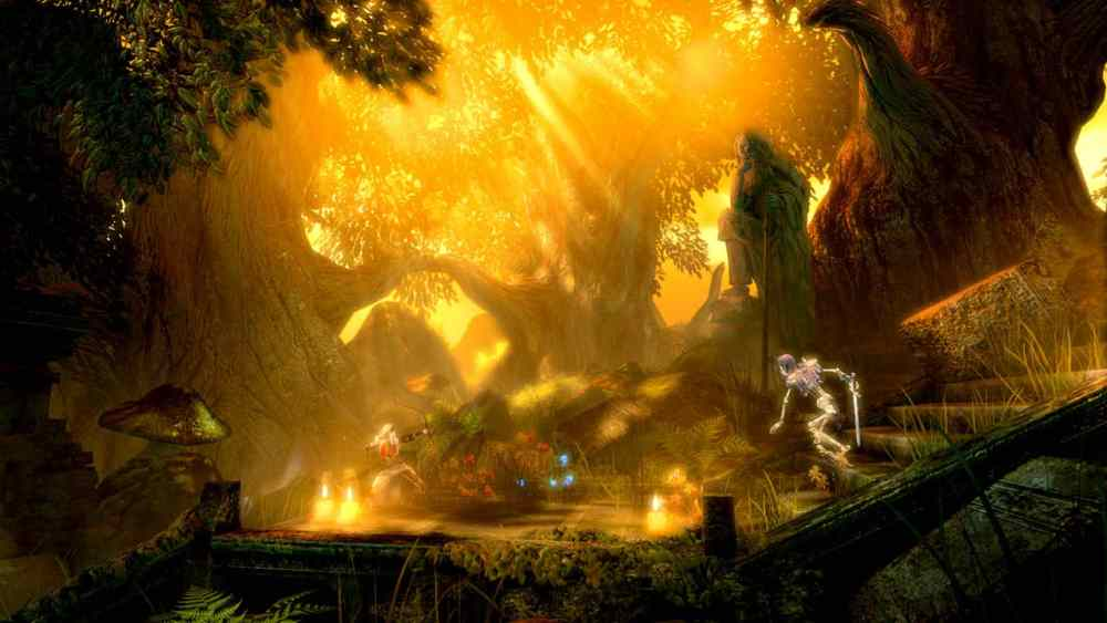 Trine Enchanted Edition Review Screenshot 2