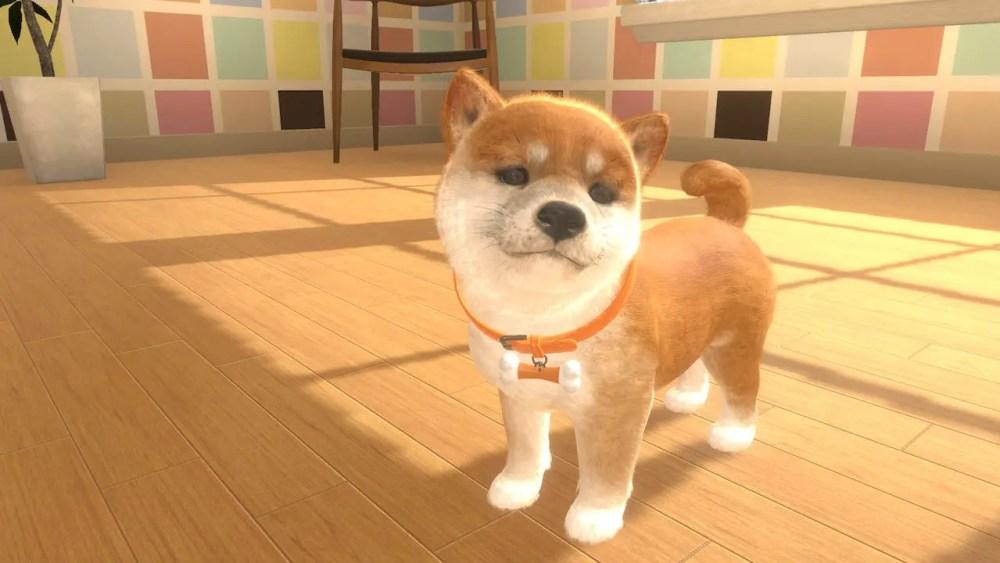 Little Friends: Dogs And Cats Screenshot 3