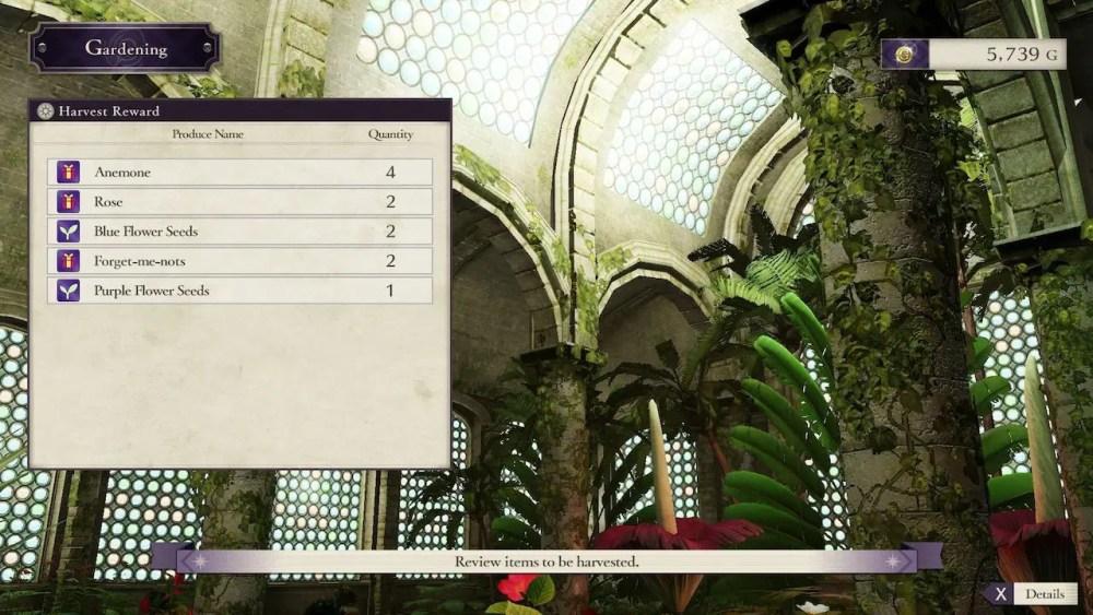 Fire Emblem: Three Houses Flowers Screenshot