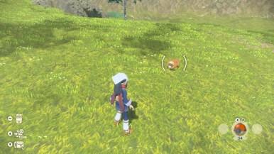Légendes Pokémon Arceus (58)