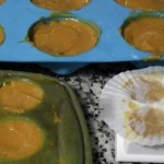 Home Made Natural Solid Shampoo with Neem and Argan, Carrot and Rosemary