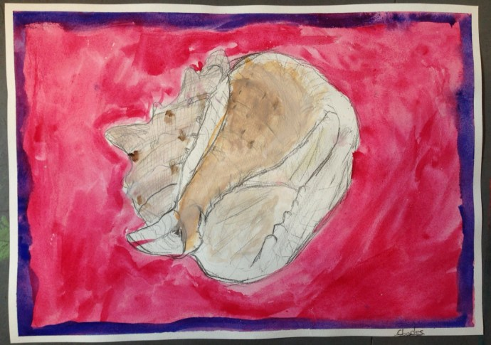 WATERCOLOUR_SHELL_09