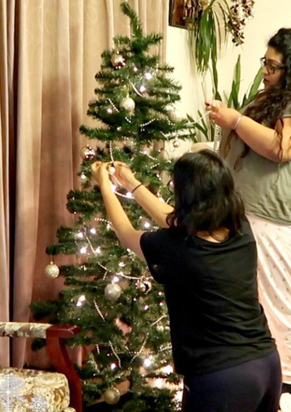 Decorating My Gran's Christmas Tree / Nishi V Vlogmas Day 3