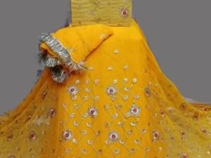 Half Pure Rajputi Poshak New Design 2021