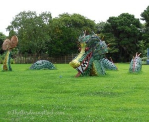 JC Raulston Arboretum. Source: Carol of the Gardening Cook