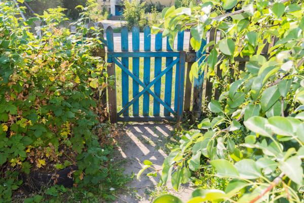 Reclaimed Garden Gate
