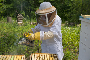 Beehive Smoker