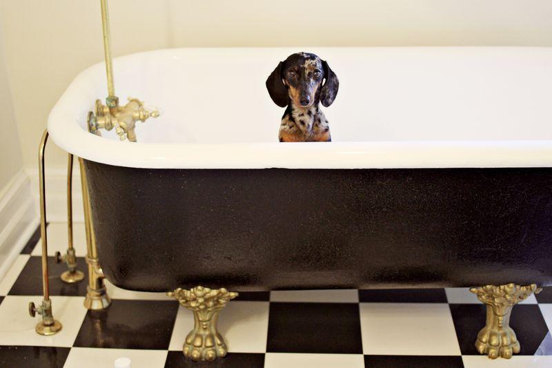 Potential_bathtub
