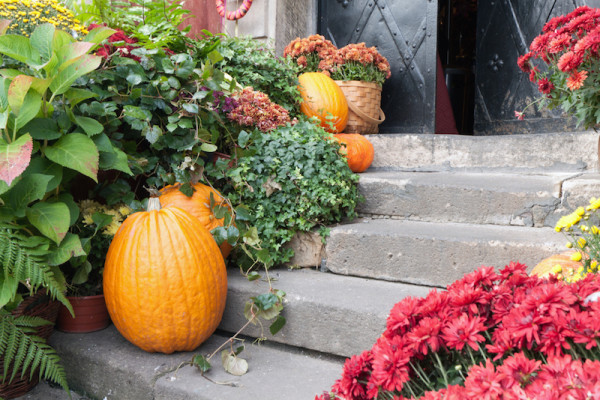 Fall Front Steps