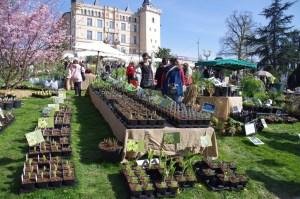 Foire aux Plantes rares les 2 et 3 avril 2016 à Saint-Priest