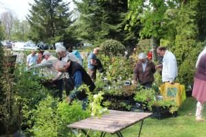 Journées de printemps des plantes au lac d'Aiguebelette le 6 et 7 avril 2019