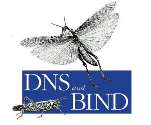 Bind DNS Mass / Bulk TTL and serial change and Mass rndc Reload