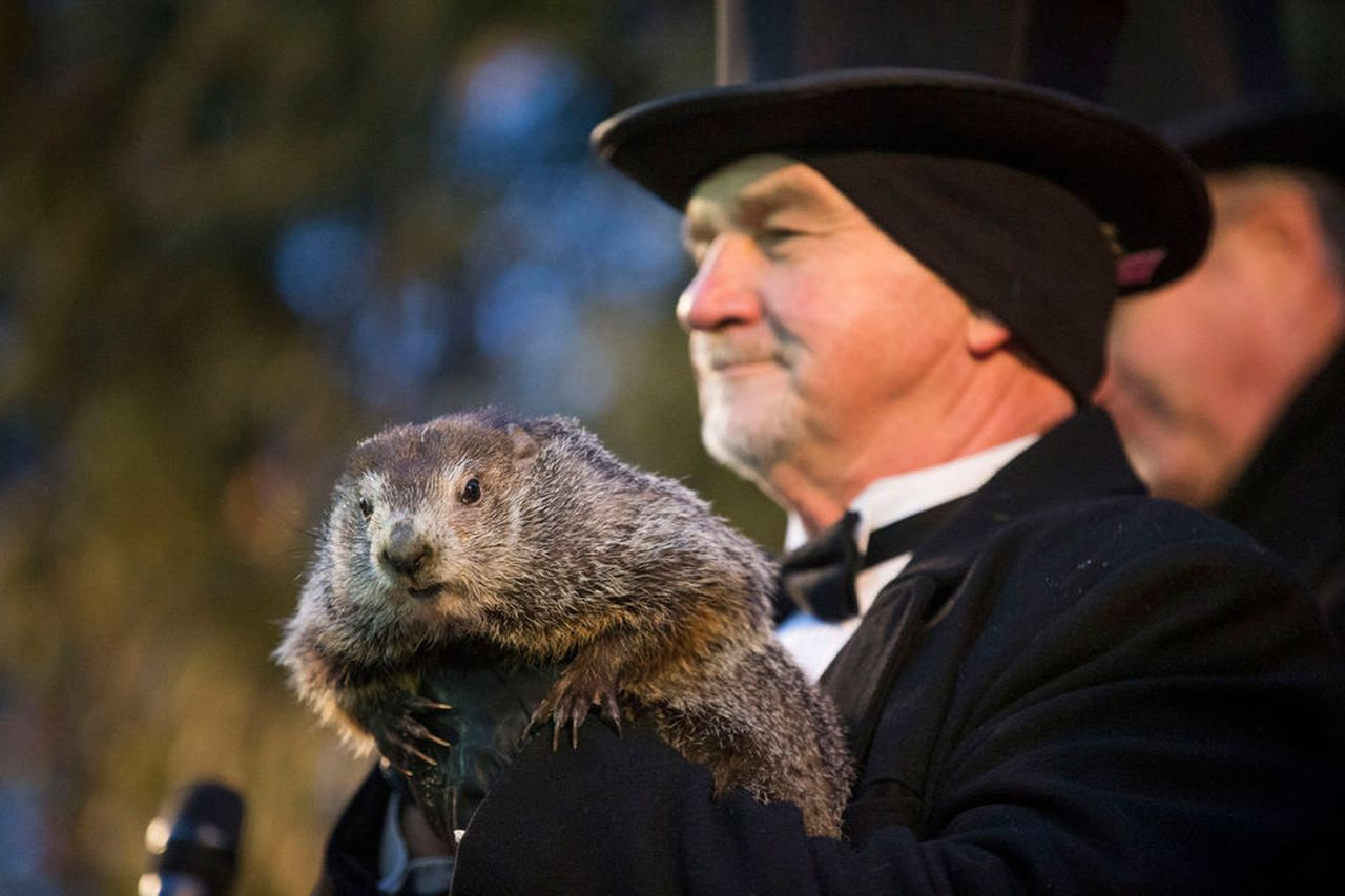 Groundhog Day Is Coming This Weekend Will