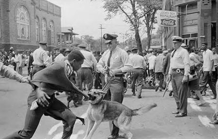 Painful History of Police Dogs