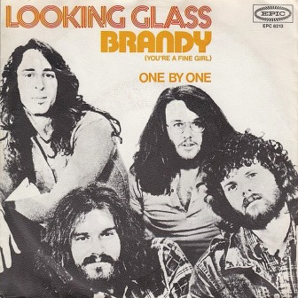 BRANDY LOOKING GLASS COVERS
