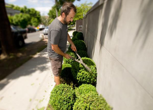garden maintenance camberwell