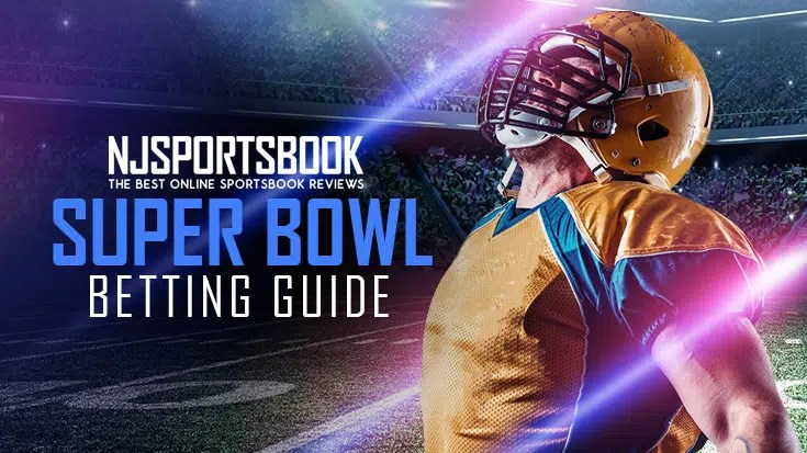 How to Bet on the Super Bowl Online?
