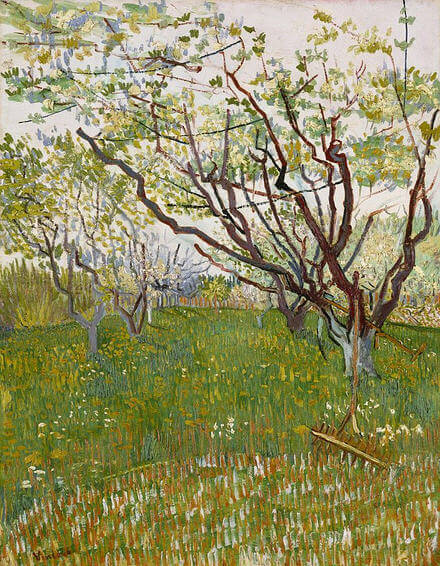 Vincent-van-Gogh-kiraz-agaci