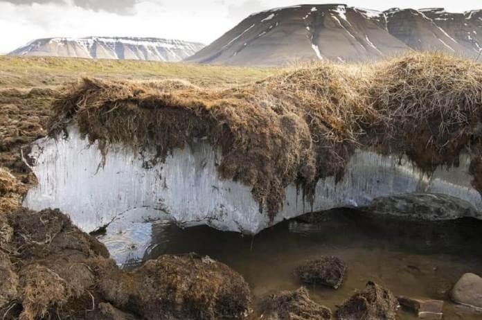 Permafrost Nedir? (Donmuş Toprak)