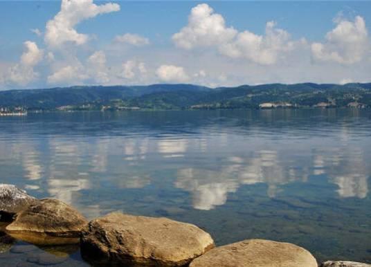 Sapanca Gölünün Özellikleri Nelerdir? Kuş Türleri ve Göle Akan Dereler