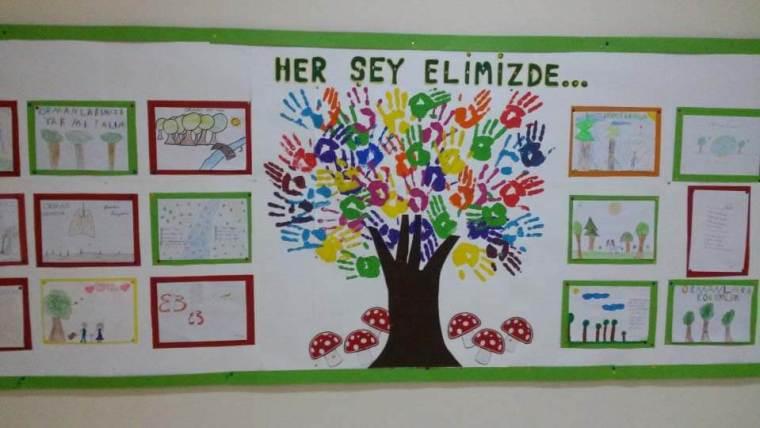 Orman Haftası Pano çalışmaları Ansiklomedia Türkiyenin Yeni