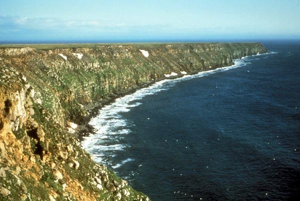 Nunivak Adası
