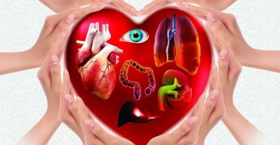 Organ Bağışı ve Nakli Haftası