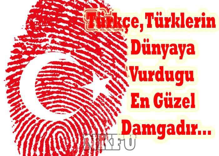 Türkçe İle İlgili Güzel Söz