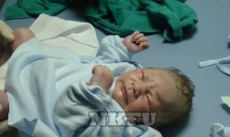 Yeni Doğan