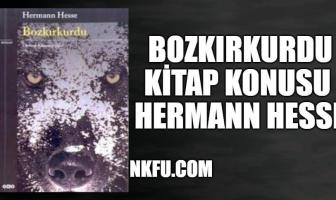 Bozkırkurdu – Hermann Hesse