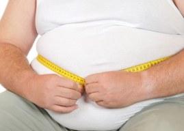 Fat (Şişman) İle İlgili İngilizce Cümleler