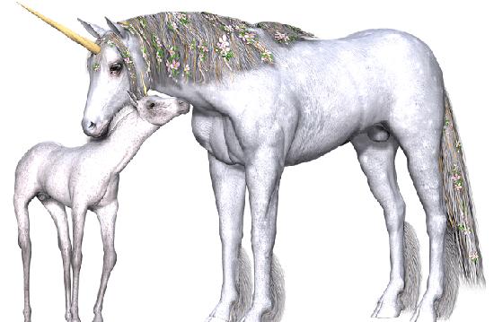 Unicorn Tek Boynuzlu At Ile Ilgili Bilgi Ansiklomedia